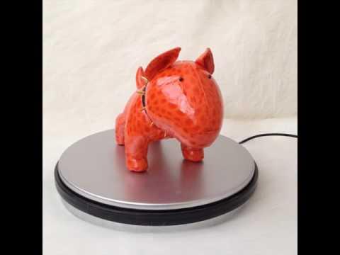 Mr. Orange the Bull Terrier