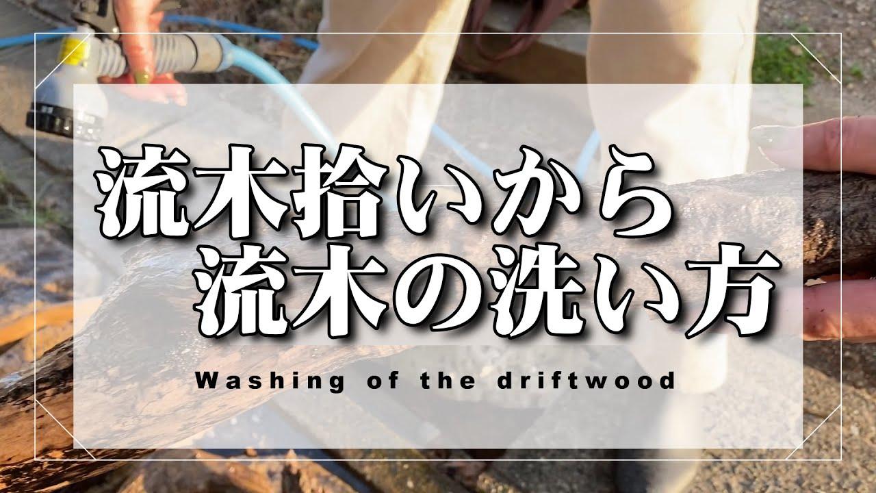 流木拾いからの流木の洗い方 | 手作りライト照明教室 PAPERMOON(東京 自由が丘)