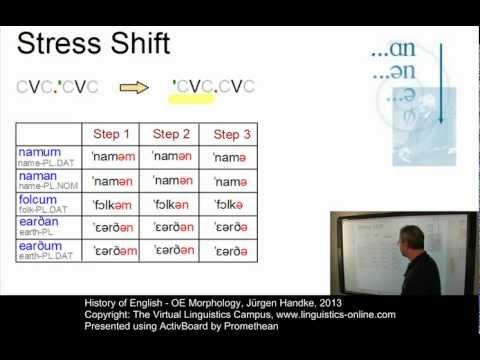 History of English - OE Morphology