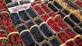 Nejlepší ovoce pro prevenci rakoviny