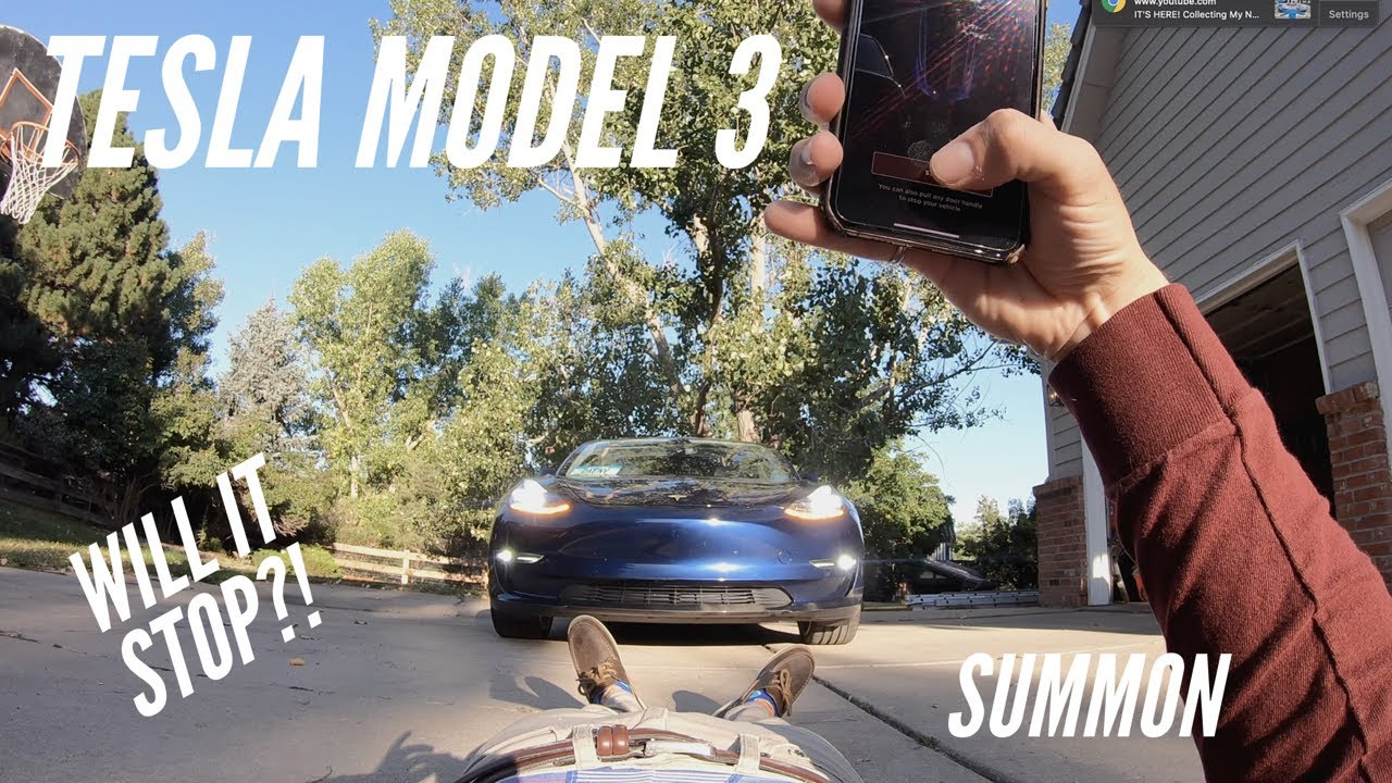 Tesla's Object Detection | What will SUMMON STOP For?!