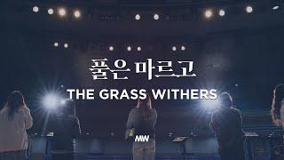 풀은 마르고 - 마커스워십 | 소진영 인도 | The grass withers