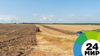 Фермерам Кыргызстана предлагают льготы на покупку российской техники - МИР 24