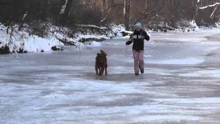 Dog and Child Running on a Frozen River
