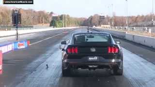 2015 Mustang GT 9 Second 1/4 Mile Pass