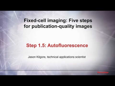 1.5 Autofluorescence–Fixed Cell Imaging: 5 Steps For Publication-quality Images