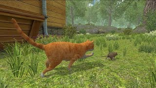 Mouse Simulator By Avelog - Android/iOS - Gameplay Episode 1 - Best Game For Mobile