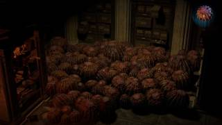Path of Exile: Beast Egg Hideout Decoration