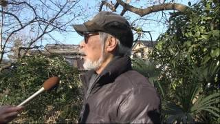 """筒井 俊明 様 作品№.1604372 ドキュメンタリー作品 13'50"""" TVF2016応募..."""
