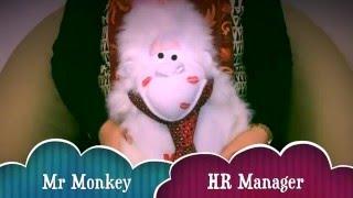 Mr Monkey  - HR Manager