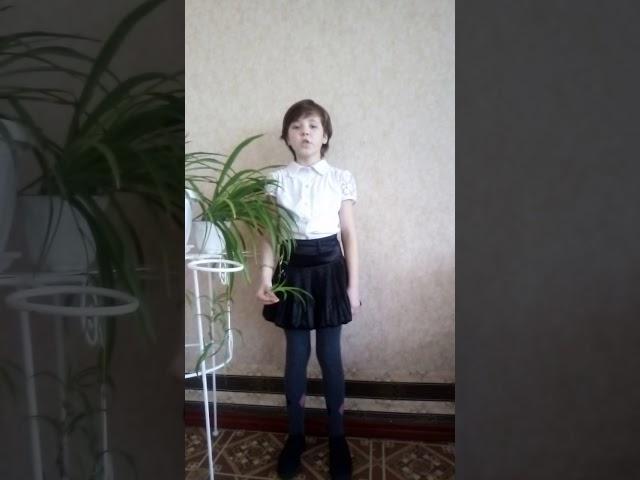 Изображение предпросмотра прочтения – КсенияМихайлова читает произведение «Есть в осени первоначальной...» Ф.И.Тютчева