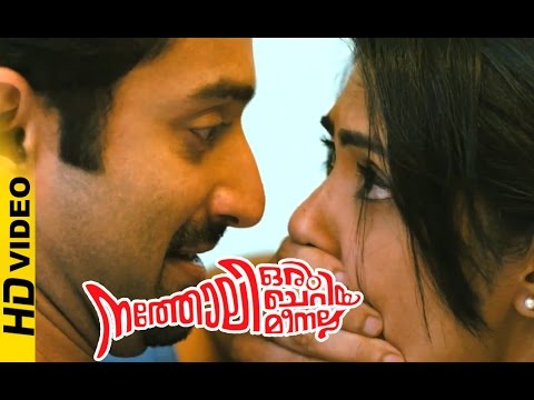 Natholi Oru Cheriya Meenalla Malayalam Movie | Fahad Fazil | Dreams of | Kamalinee Mukherjee | HD