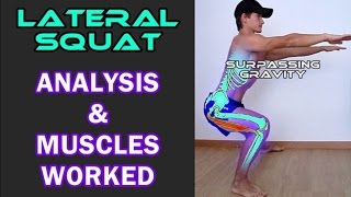 Lateral Squat - Muscles worked & Proper form