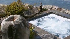 Custom Swimming Pools in Seattle ~ Aqualine Pool & Spa ~ Swimming Pool Construction in WA