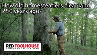 Ep156: Homestead History - How did early settlers clear land?