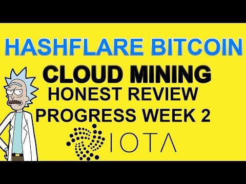 Week 2 Progress Of My Hashflare Cloud Mining And IOTA