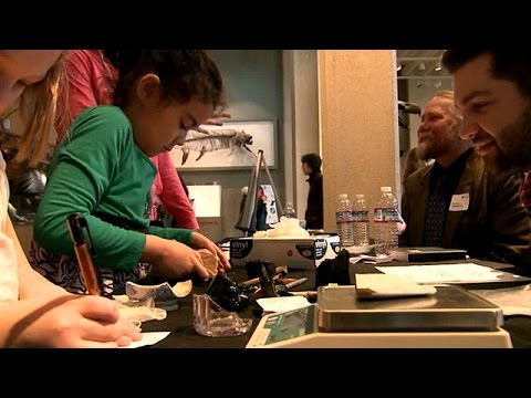 CityStream: Archaeology Day at the Burke Museum