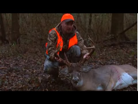 Hunting Whitetails During the Arkansas Rut