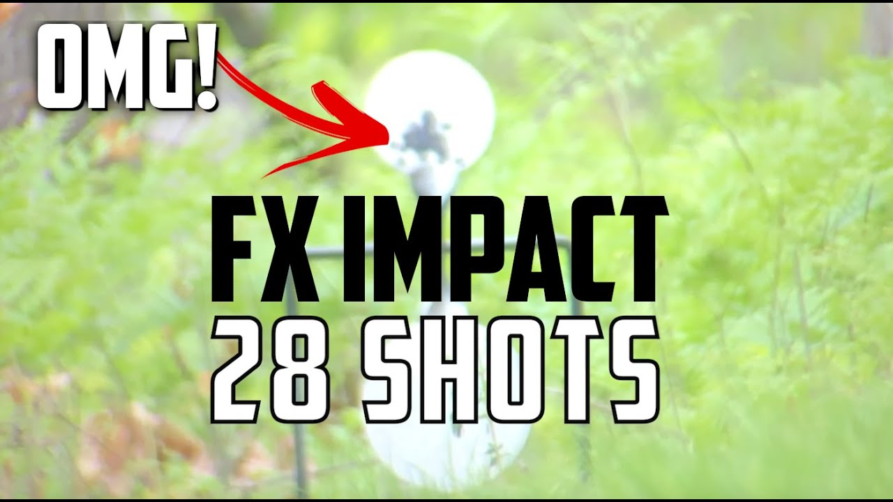 FX Impact  25 with INSANE ACCURACY: FX Airguns Tuned by Southern Precision  Air Weapons (SPAW)