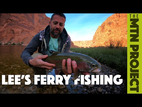 Grand Canyon Fishing.  Jay And Chase Fish Lees Ferry