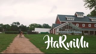 Rogers Park - Harninu [OFFICIAL VIDEO]