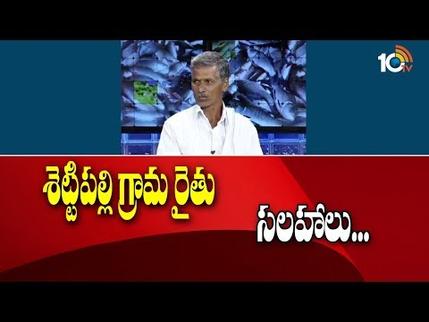Matti Manishi | Shettipalli Village Farmer Ramaswamy Suggestions For Agricultural crops | 10TV