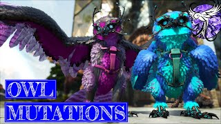 THE BEST OWLS EνER | Story Mode - Extinction EP27 | ARK Survival Evolved
