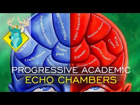 TL;DR - Progressive Academic Echo Chambers