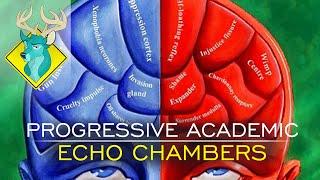 tl dr progressive academic echo chambers