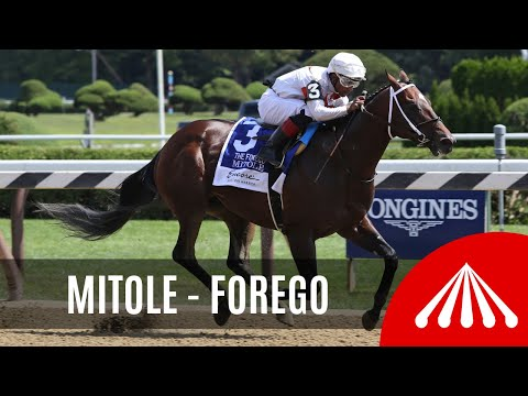 Mitole - 2019 - The Forego Stakes presented by Encore Boston Harbor