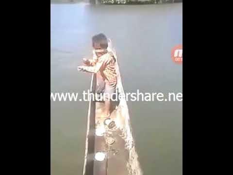 5 year old boy catch a 35 kg fish