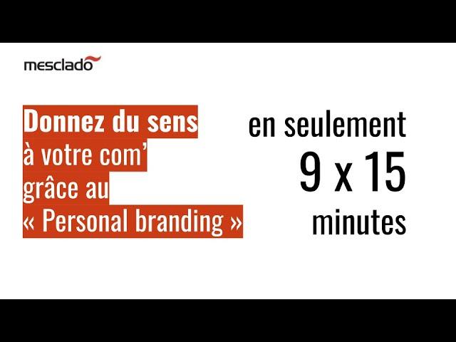 2009 Donner du sens à sa communication sur Linkedin   Guide Personal Branding complet gratuit Mescl