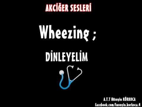 Akciğer Sesleri (Ral,Ronküs,Plevral Frotman,Wheezing,Stridor)
