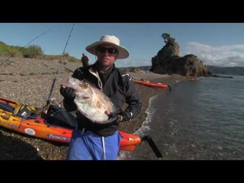 Kayak Fishing New Zealand's Far North And Fishing Tips - RSK Ep 1