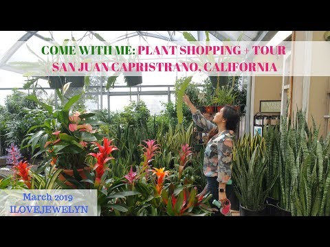 Come with me: Plant shopping + tour | San Juan Capistrano, CA  | March 2019 | ILOVEJEWELYN