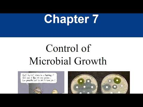 Ch 7  Control of Microbial Growth video