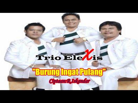 Trio Elexis -  Burung Ingat Pulang