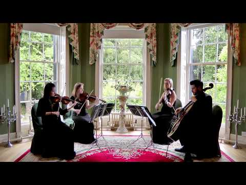 I Want To Hold Your Hand (The Beatles) Wedding String Quartet