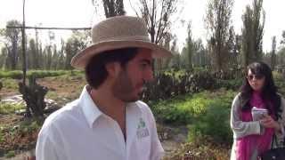 La Chinampa Organic Farming #1 Agricultura Orgánica en la Ciudad de México