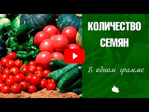 Сколько семян в 1 грамме? Сад и огород с HitsadTV