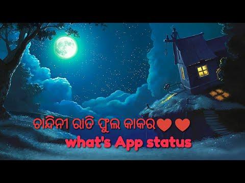 Chandini rati phula kakara. Whats app status style