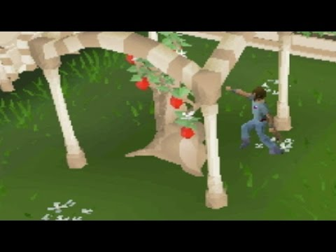 An Unknown Way To Train Thieving on OSRS (Probably)