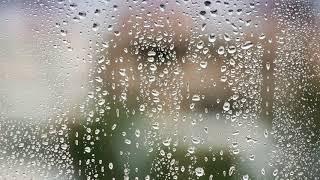 Как проверить влажность воздуха в квартире в домашних условиях?
