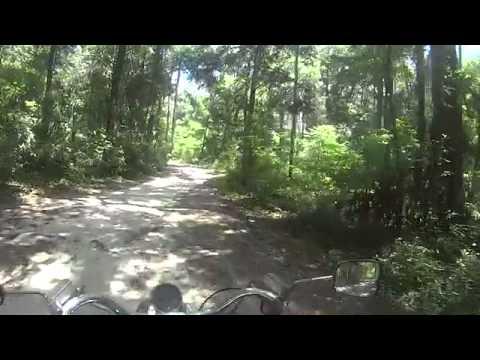 Cruising Ichetucknee Springs State park on a motorcycle