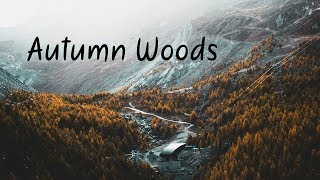 Autumn Woods | Beautiful Chill Mix