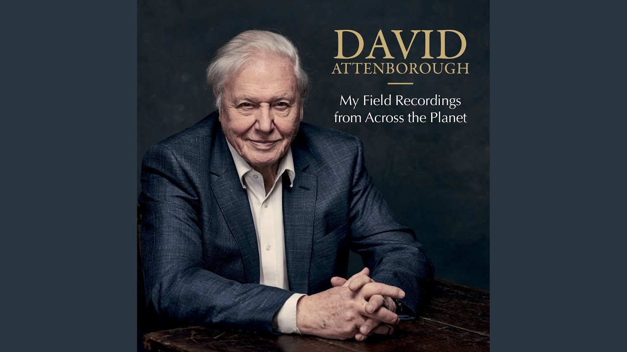 RA News: David Attenborough launches competition to remix 1956 field