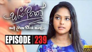 Sangeethe | Episode 239 09th January 2020 Thumbnail