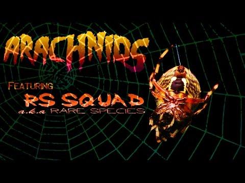 Rare Species - Arachnids