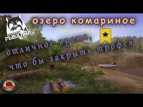 Ажиотаж окуня на озере  Комарином | Русская Рыбалка 4 |