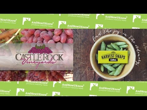 AndNowUKnow - Castle Rock, Calbee - Quick Dish